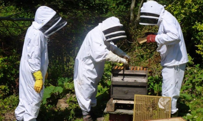Introduction To Beekeeping – a talk by Colin Rees, Chairman of Cornwall Beekeepers Association